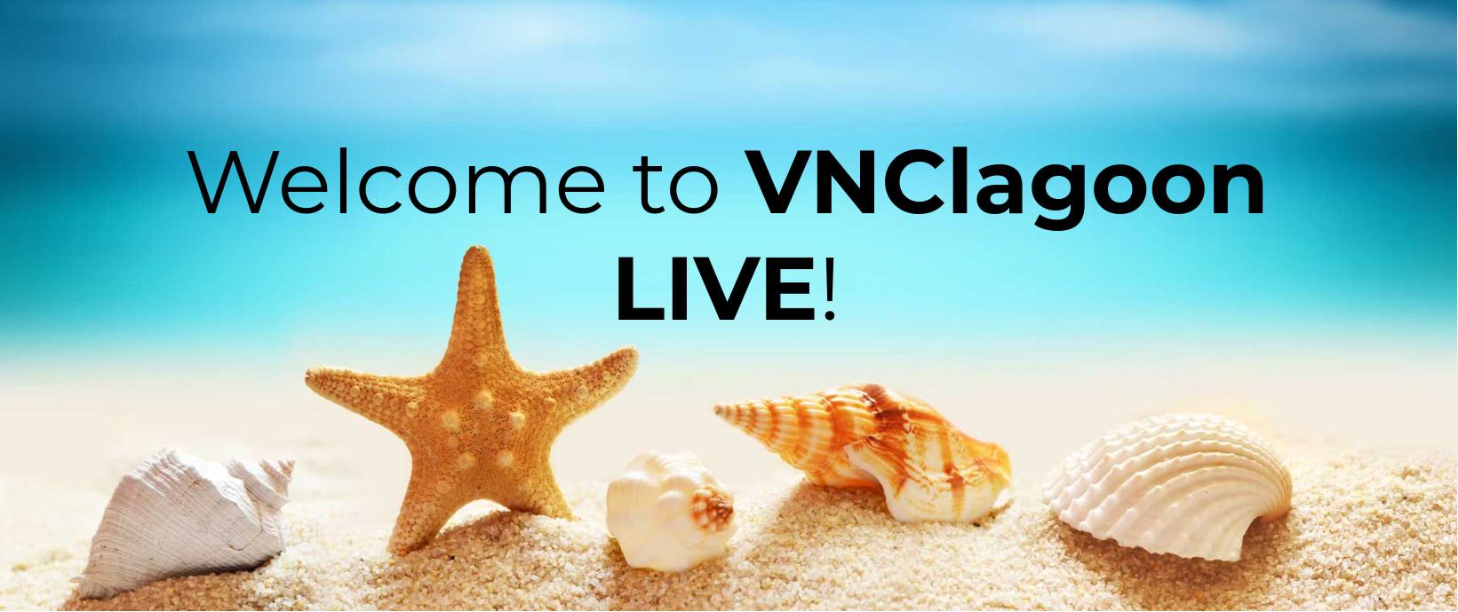 VNClagoon LIVE teaser image