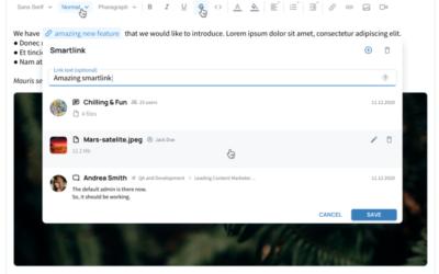 VNCchannels Version 1.2 – Smartlinks und das Prinzip der Vernetzung