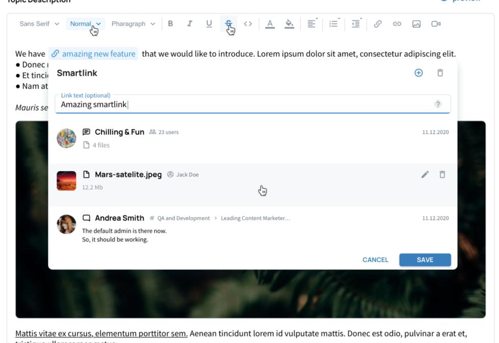 VNCchannels Version 1.2 – Smartlinks and the principle of interlinkage